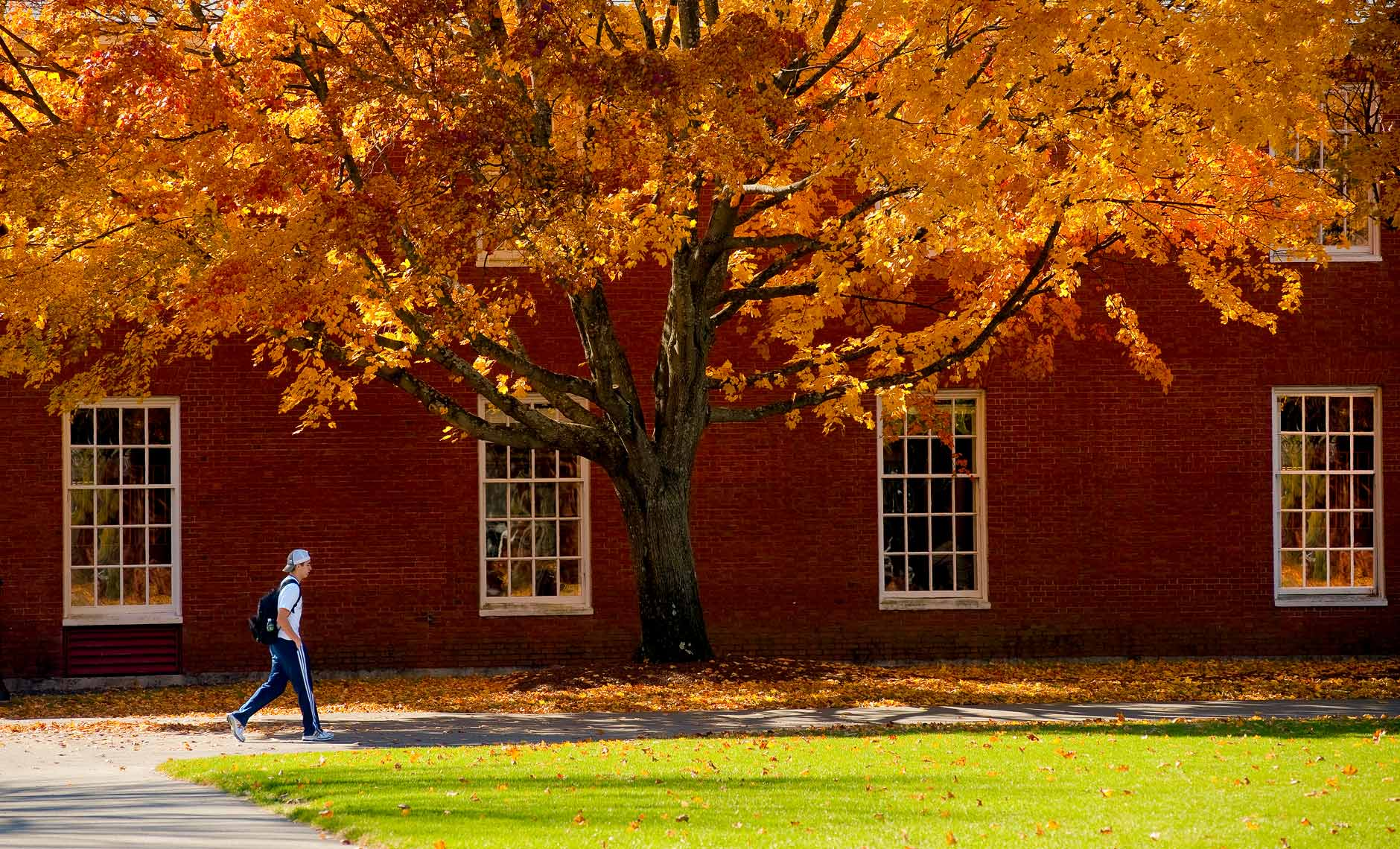 lone college student walking on campus with fall foliage